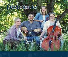 FiddleSticks Celtic Folk Band
