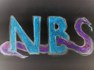 NBS Records