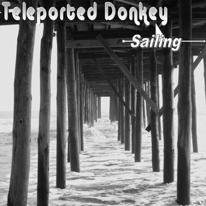 Teleported Donkey Chill Pill