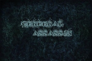 Cerebral Assassin (India)