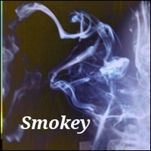 Smokey.......new game menu compo